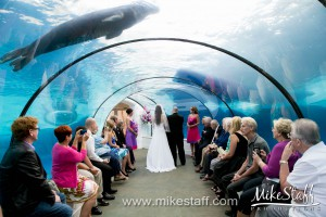 Detroit Zoo – Royal Oak, MI Wedding Photo -