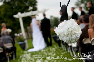 Paint Creek Country Club – Lake Orion, MI Wedding Photo -