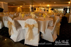 Riverhouse Banquet Center, Mt. Clemens Wedding Photo -