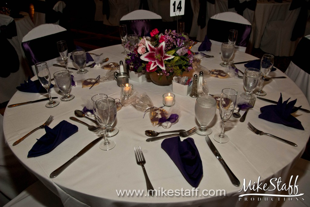 Marriott at Eagle Crest, Ypsilanti Wedding Photo -