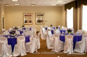 DoubleTree Hotel, Novi Wedding Photo -
