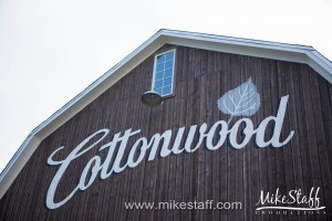 Cottonwood Barn – Dexter, MI Wedding Photo -