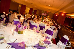 Radisson Kingsley Hotel, Bloomfield Hills Wedding Photo -